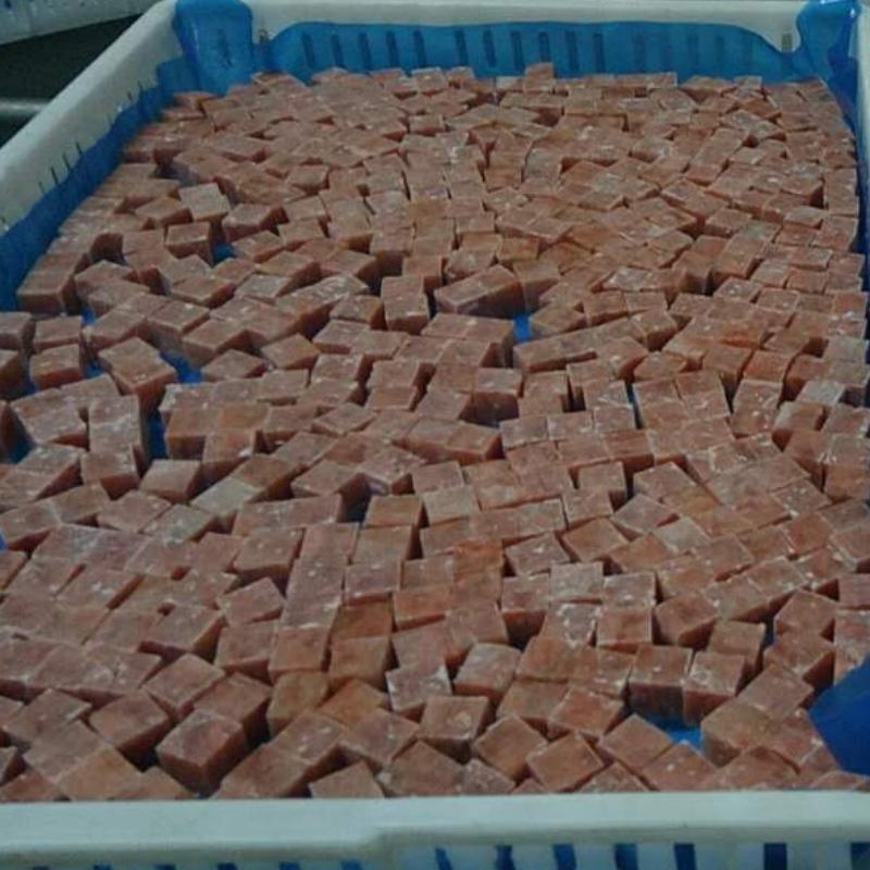 Cubo di salmone rosa congelato