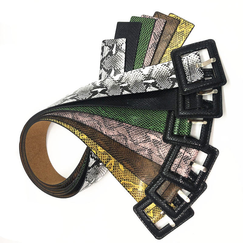 HD0728 - Accessori per cinture da donna con cinturini stampati e serpente