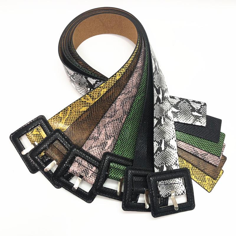 HD0827 - Cintura in pelle di serpente colorata Cintura in pelle di lusso Fibbia ad ardiglione Cinture in PU da donna Cappotto Cintura a fascia da corsetto Cintura da donna Cintura da spettacolo